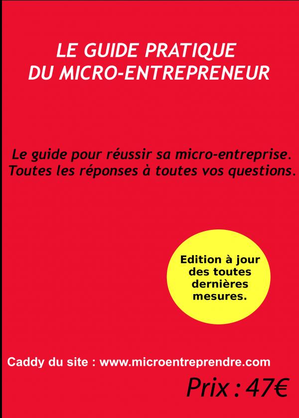 Guide pratique du micro entrepreneur for Micro entreprise idee