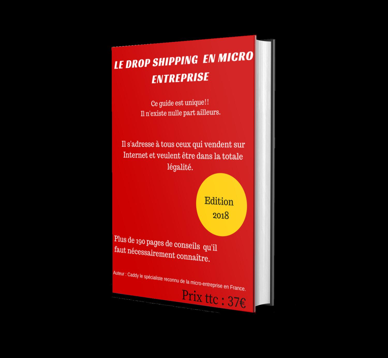 Le Dropshipping En Micro Entreprise