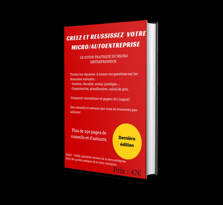 Le Guide Pratique Pour Réussir En Micro Entreprise