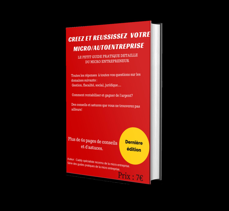 Le petit guide détaillé du micro entrepreneur